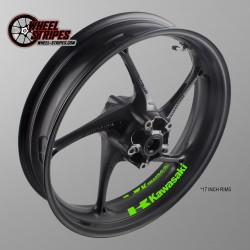 KAWASAKI interior rim stickers